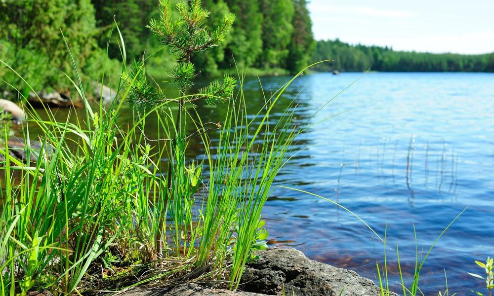 Sensorer vaktar vattennivåerna i Tingsryds sjöar